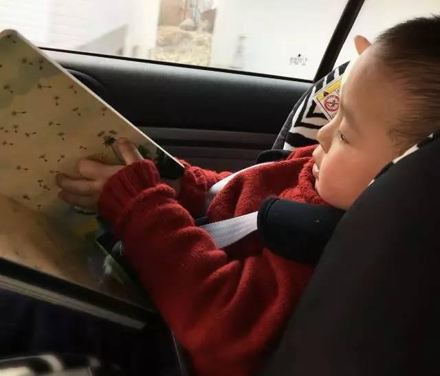 28月宝宝的英语启蒙故事–我的心得和感受分享